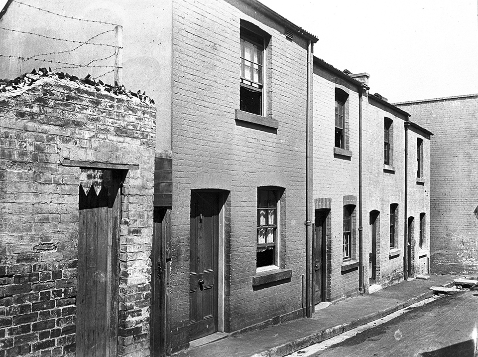 Terraces in waine street surry hills c1910 the for Terrace dictionary