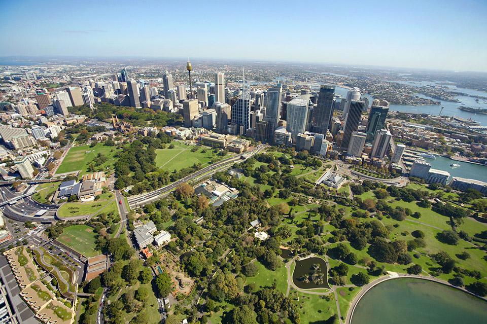 Royal Botanic Gardens The Dictionary Of Sydney
