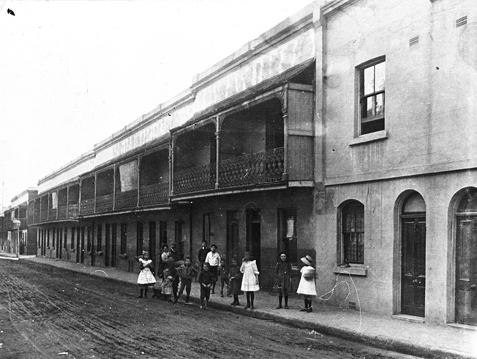 Terraces on irving street chippendale 1908 the for Terrace dictionary