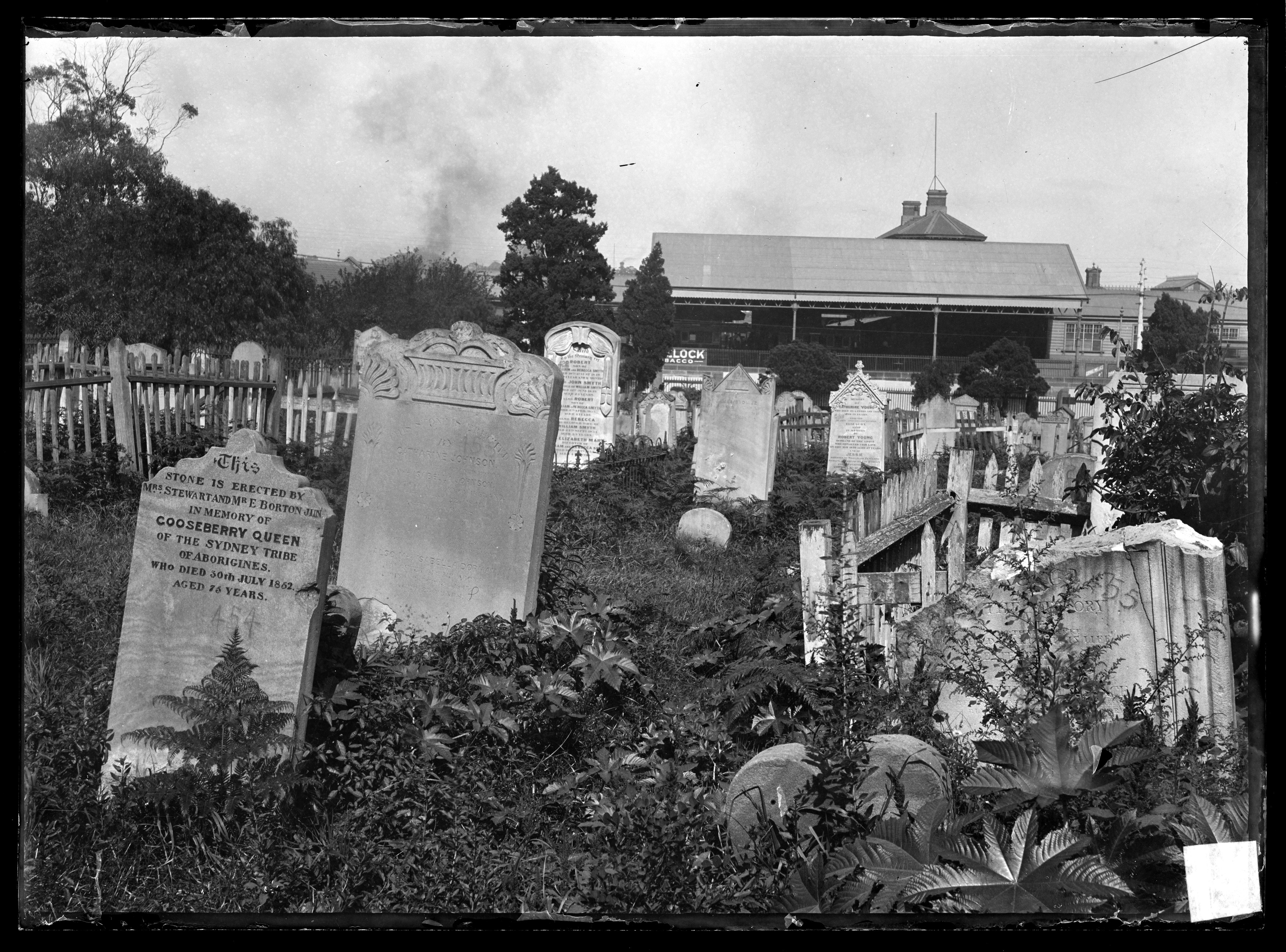 Death and dying in nineteenth century Sydney | The